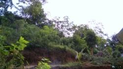 Land for Sale in Dodampe(Ratnapura)