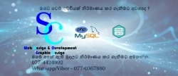 Web Site Design & Development