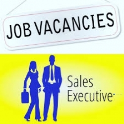 Sales Executive - Kottawa