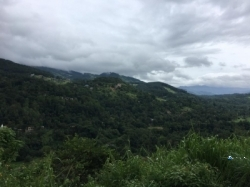 Land for Sale in Kandy(Gelioya)