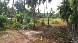 Commercial Land For Sale In Ratnapura