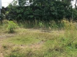 Land for Rent in Ratnapura