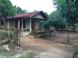House with Land for Sale in Thanamalvila