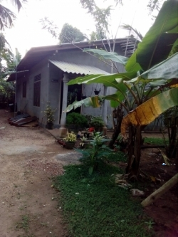 House for Sale in Giriulla