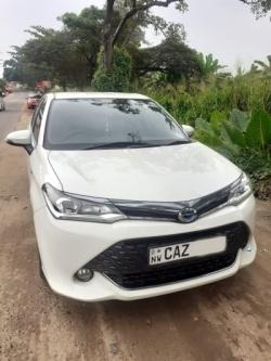 Toyota Axio WXB
