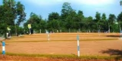 Land For Sale In Walpitagama