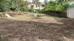 Land for Sale in Homagama