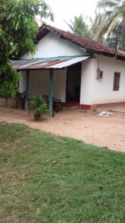 House With Land For Sale In Kuliyapitiya