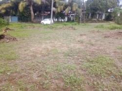 Land for Sale in Homagama(Panagoda)