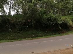 Land for Sale in Walasmulla(Kirama)